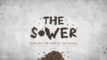 The Sower - Planting the Seed of the Gospel